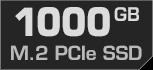 1000 GB M.2 PCIe SSD