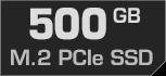 500 GB M.2 PCIe SSD